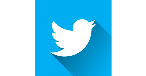 imagen de Cómo hacer un logo ejemplo isotipo twitter - More Digital Marketing y Publicidad digital